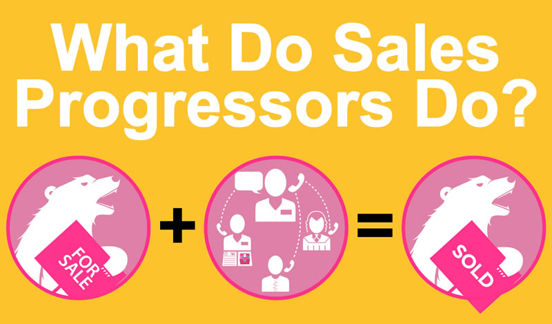 Picture of What Do Sales Progressors Do?